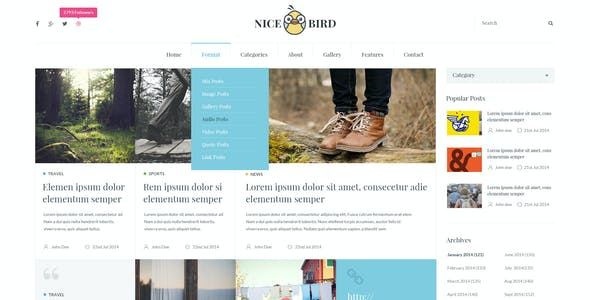 Nice Bird | Blog and Newspaper PSD Theme