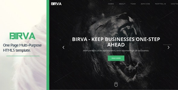 BIRVA - Responsive Portfolio Template - Virtual Business Card Personal