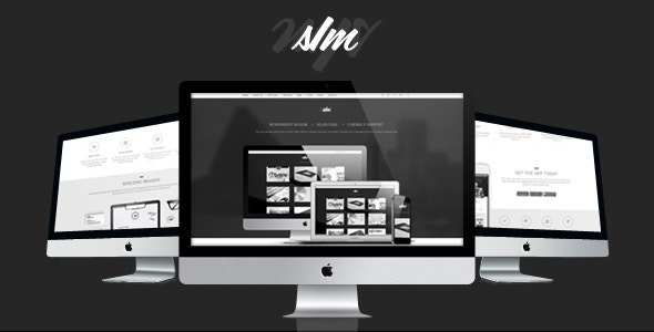 The SIM - Responsive One Page Template - Creative Site Templates