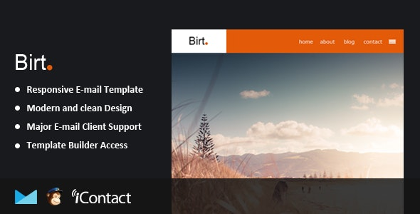 Birt - Responsive Email + Themebuilder Access  - Email Templates Marketing