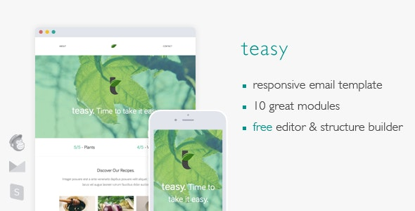 Teasy - Responsive Email Template - Newsletters Email Templates