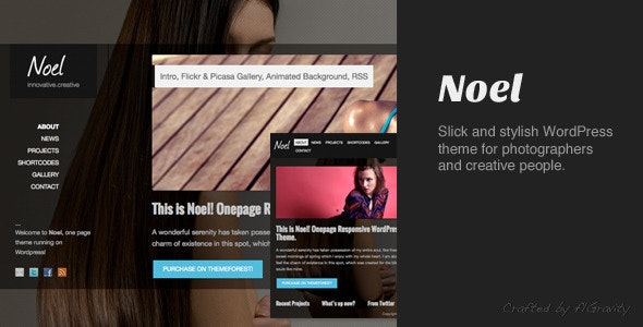 Noel - Responsive Onepage WordPress Theme - Photography Creative