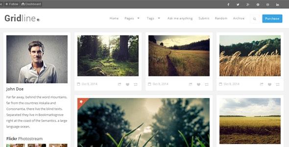 GridLine - Responsive Grid Theme - Blog Tumblr