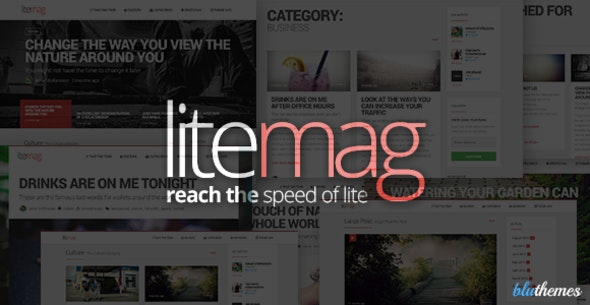 LiteMag - Easy to use Minimalist Magazine Theme - News / Editorial Blog / Magazine