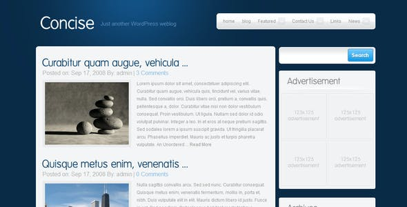 Concise Business and Portfolio Template