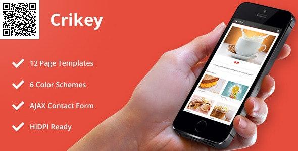 Crikey | Mobile HTML/CSS Portfolio Template - Mobile Site Templates