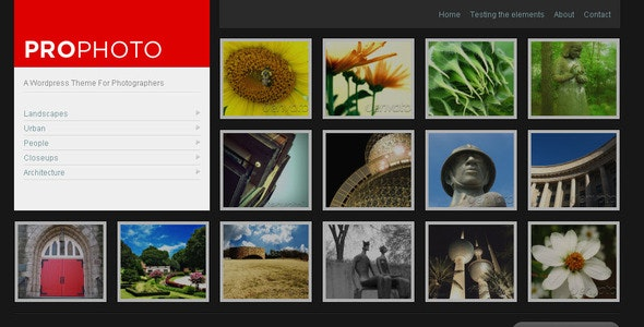 WP ProPhoto - A Wordpress Theme For Photographers - Photography Creative