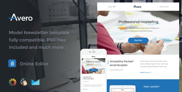 Avero - Responsive Email Template + Online Editor  - Email Templates Marketing