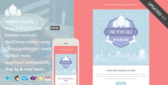 Promo, Holiday Email Template + Builder Access - Newsletters Email Templates