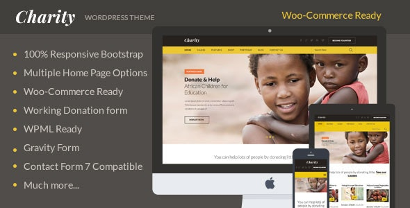 Charity: Nonprofit/NGO/Fundraising WordPress Theme - Charity Nonprofit
