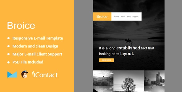 Broice - Responsive E-mail Template + Themebuilder Access  - Email Templates Marketing