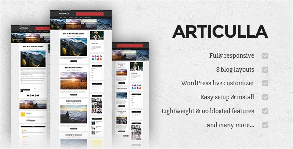 Articulla - Responsive WordPress Blog Theme - Blog / Magazine WordPress