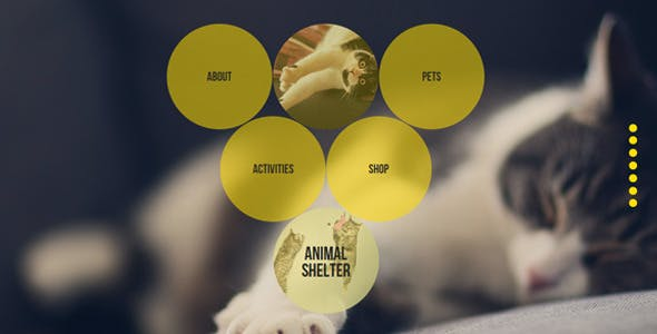 Animal Shelter Muse Template With Gumroad Shop