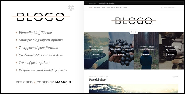 Blogo - Responsive Blog WordPress Theme - Personal Blog / Magazine