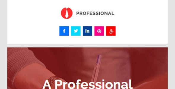 Professional, E-mail Newsletter Pack