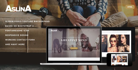 Aslina - Responsive One Page Portfolio HTML Template - Portfolio Creative