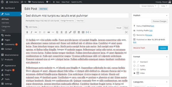 STELLA - Clean Blog/News/Magazine Responsive Theme