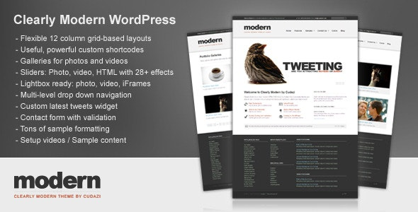 Clearly Modern WordPress by Cudazi by cudazi | ThemeForest