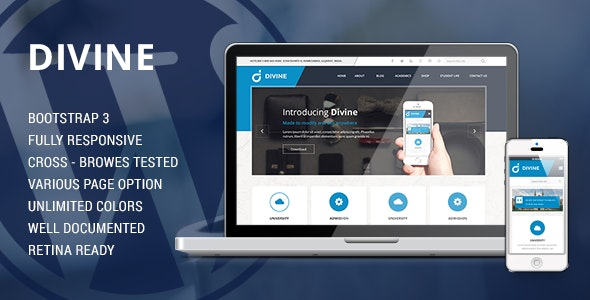Divine - Professional Business Drupal Theme  - Business Corporate