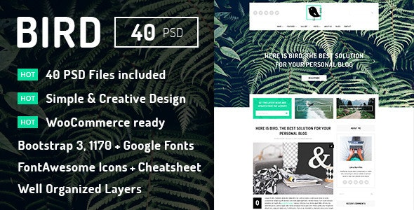 Bird - Elegant Magazine Blog PSD Template - Miscellaneous Photoshop