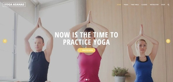 Yoga - Responsive WordPress Theme - Health & Beauty Retail