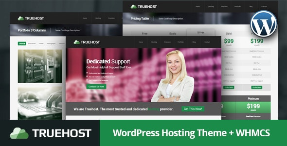 Truehost - Responsive Hosting WordPress Theme - Hosting Technology