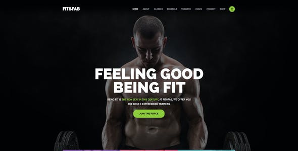 Fit & Fab - Gym and Fitness PSD Template