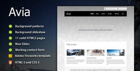 Avia - Clean Business Template - Business Corporate