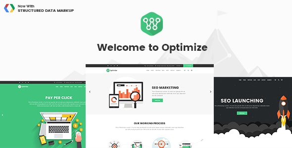 Optimize - SEO & Social Media Theme - Marketing Corporate