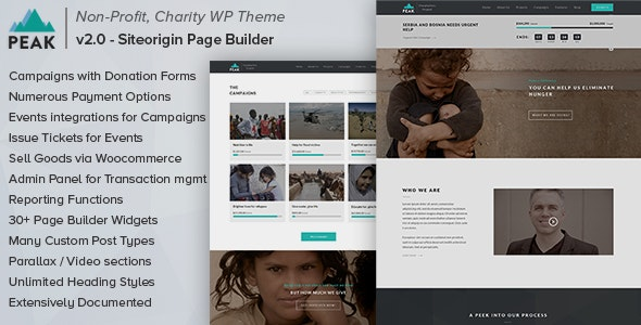 Peak - Charity Nonprofit WordPress Theme - Charity Nonprofit