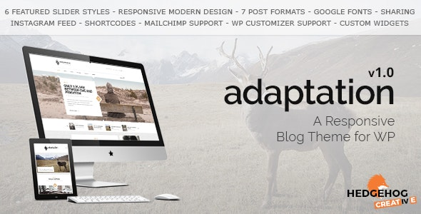 Adaptation - a Responsive Blog Theme for WordPress - Personal Blog / Magazine