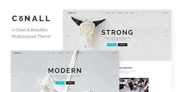 Conall - Clean Multipurpose Theme - Creative WordPress