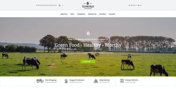 Organic Food/Fruit/Vegetables Responsive Web Store Template - Tomoko