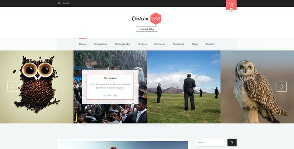 Gideon 300 - Personal Blog, LMS and eCommerce PSD Template