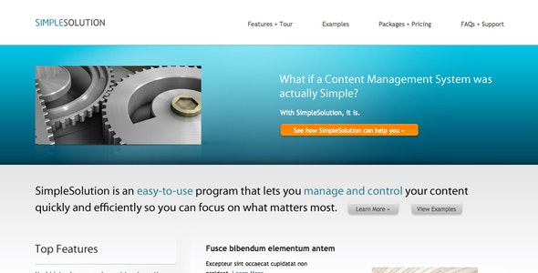SimpleSolution - Software Technology