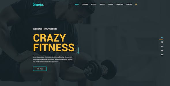 Bamia - Multipurpose One-Page Template