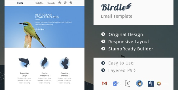 Birdie - Responsive Email Template - Email Templates Marketing