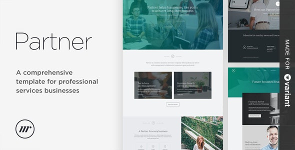 Partner accounting and law template with Variant Page Builder - Corporate Site Templates
