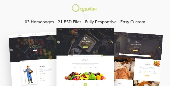 Organian - Multiconcept Organic Store PSD Template - Food Retail