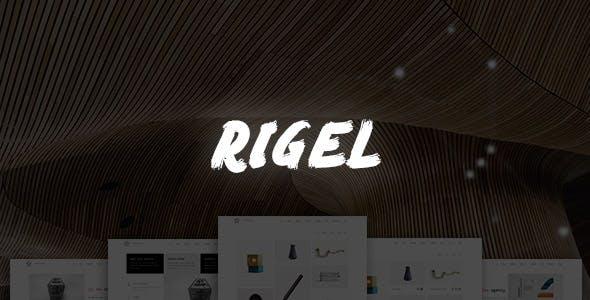 Rigel - Ultimate Agency & Portfolio Theme