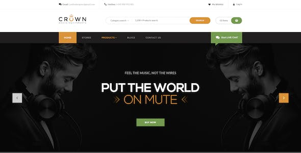 Crown - Audio Equipments PSD Template