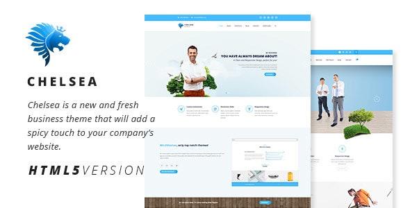 Chelsea - Multi-Purpose Business HTML5 Template  - Business Corporate