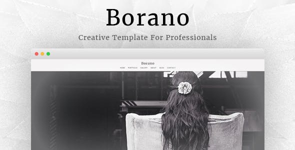 Borano - Photography / Portfolio Template
