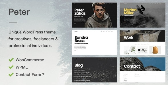 Peter - A Unique Portfolio Theme for Creatives, Freelancers & Professional Individuals - Portfolio Creative