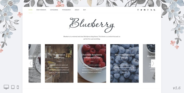 Blueberry - A Responsive WordPress Blog Theme - Personal Blog / Magazine