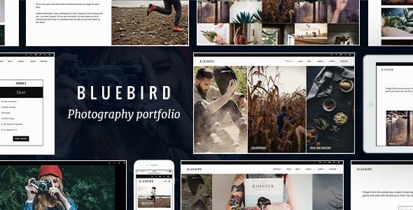 Bluebird - Thiết kế chuyên nghiệp về nhiếp ảnh