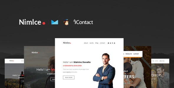 Nimlce - Responsive E-mail Templates set + Online Access  - Email Templates Marketing