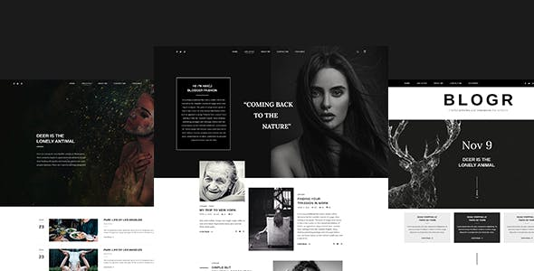 BLOGR – PSD template for Special BLOGGERS