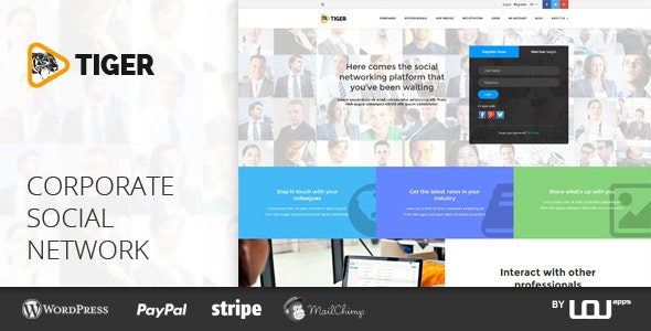 Tiger Social Network Theme For Companies Professionals By Directorythemes