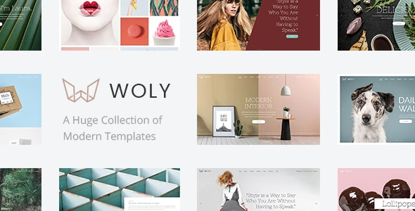 Woly - Multipurpose WordPress Theme - Creative WordPress